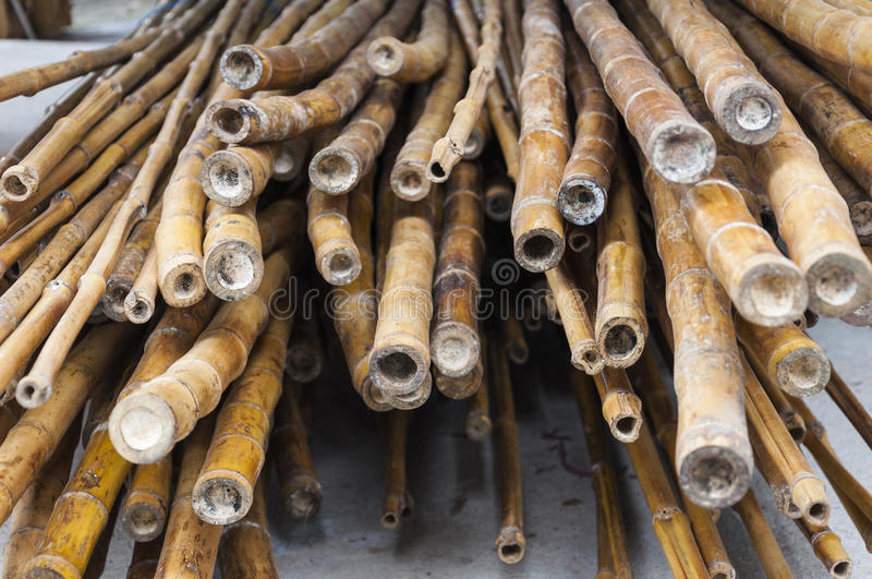 Bamboo. American bamboo rods ready for use in construction royalty free stock photo