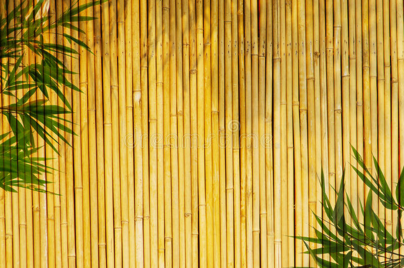 Download Bamboo Background Stock Photos - Image: 10133143
