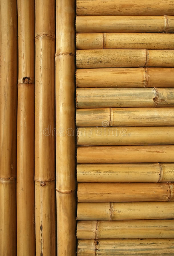 Download Bamboo background stock photo. Image of japan, culture - 14851406