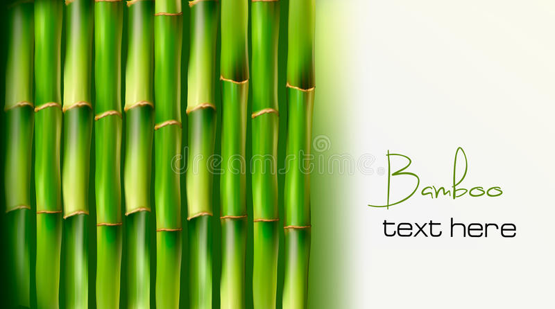 Download Bamboo background. Vector stock vector. Image of chinese - 23350418