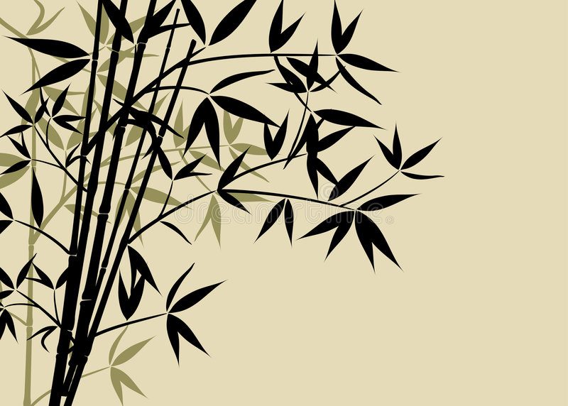 Bamboo background, vector royalty free illustration