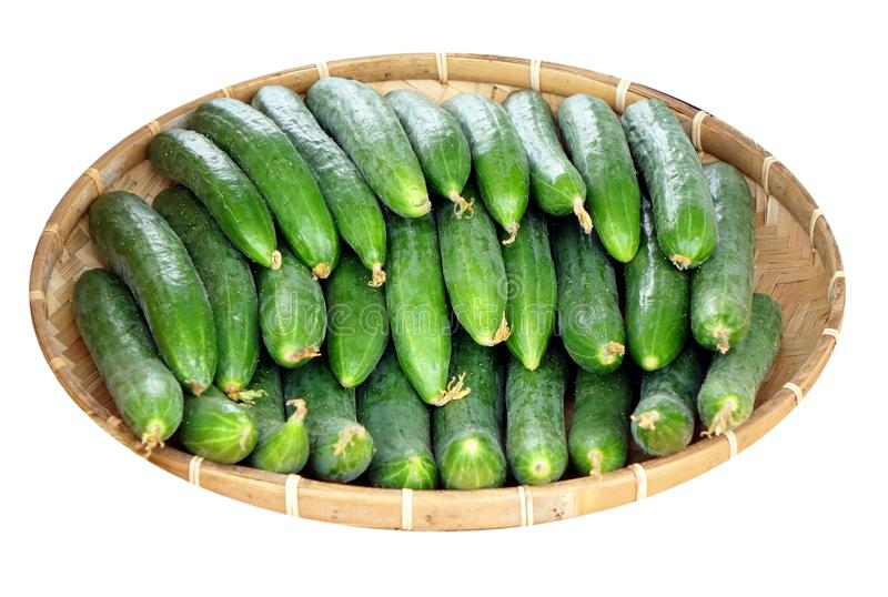 Bamboo Basket with Fresh Cucumbers stock photo