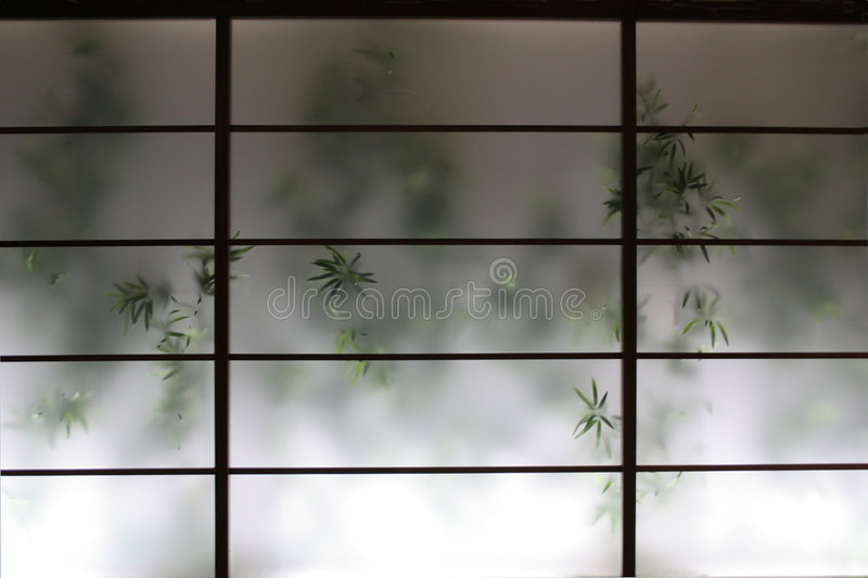 Bamboo Behind Screen stock photo