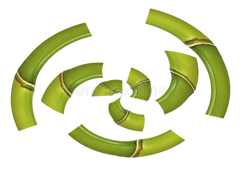 Bamboo in bent parts. Ona white background royalty free illustration
