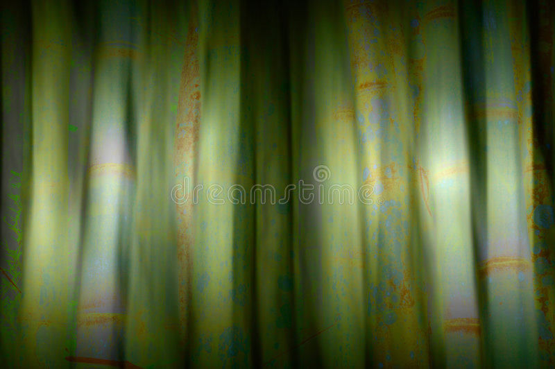 Bamboo blur. Background blur design of bamboo stems royalty free stock photos