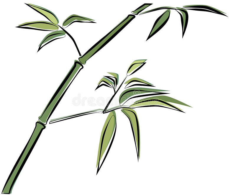 Download Bamboo branch stock vector. Image of nature, hand, vector - 25450877