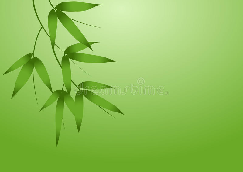 Download Bamboo Branches stock vector. Illustration of green, bamboo - 11739295