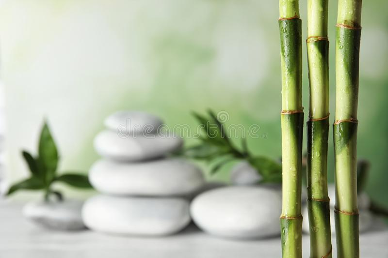 Bamboo branches against blurred spa stones on table stock photos