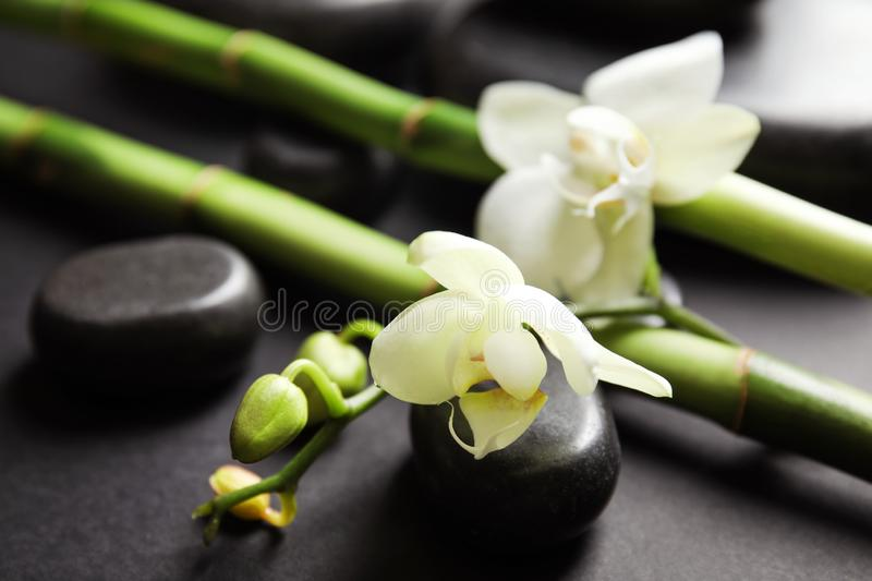 Bamboo branches with flowers and spa stones royalty free stock images