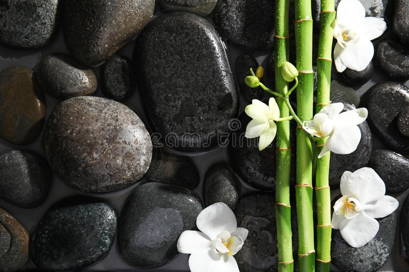 Bamboo branches, flowers and spa stones in water, top view royalty free stock photos