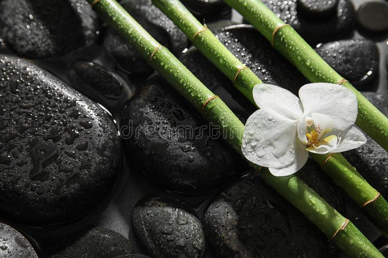 Bamboo branches, orchid and spa stones in water stock photos
