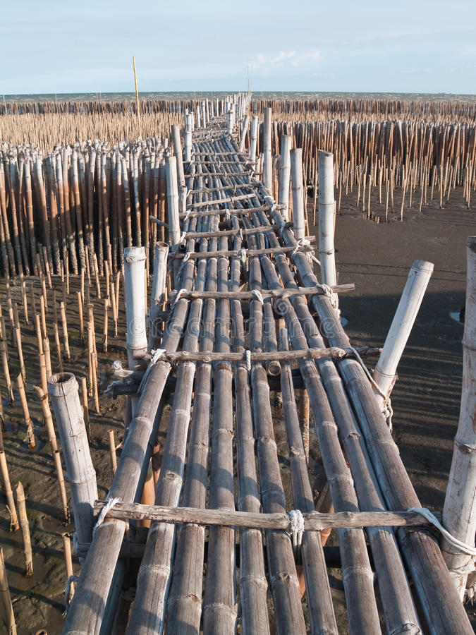 Download Bamboo bridge stock photo. Image of nature, timber, material - 14859470