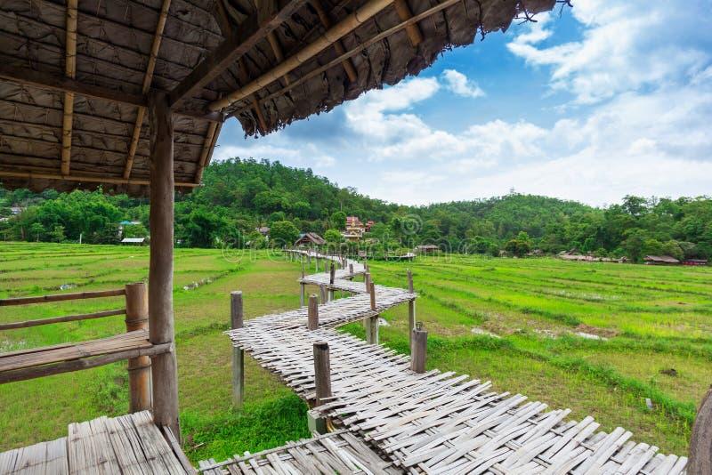 Bamboo bridge Boon Ko Ku So at Pai; Thailand royalty free stock images