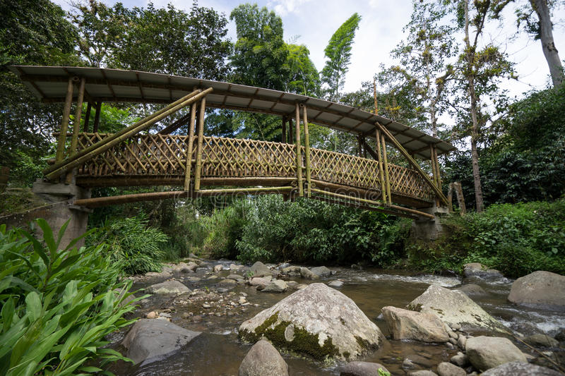 Bamboo bridge in Colombia. Bamboo foot bridge in in the Colombian highlands of Cauca by Tierradentro royalty free stock photography