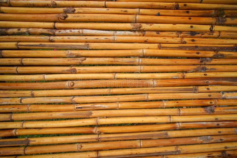Bamboo bridge in garden. Thailand royalty free stock images