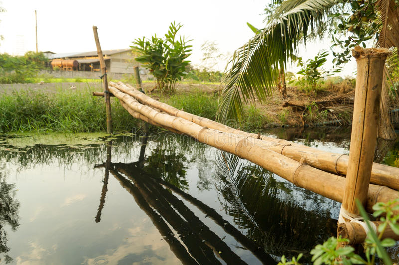 Bamboo bridge. Over the small river. It crossing to the other side.The bridge is made up of simple folk stock images