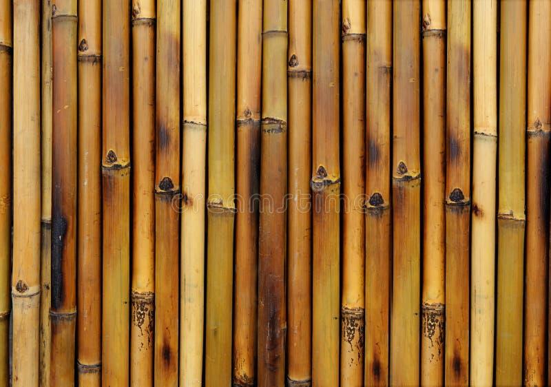 Bamboo Burn Background Stock Image Image Of Striped