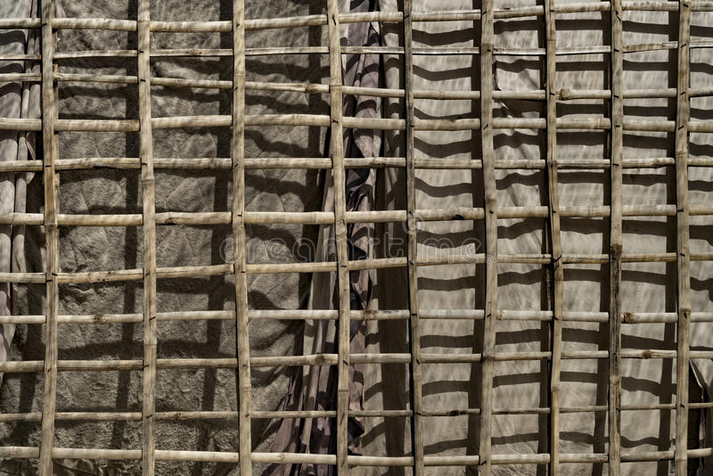 Bamboo Canvas Wall stock images