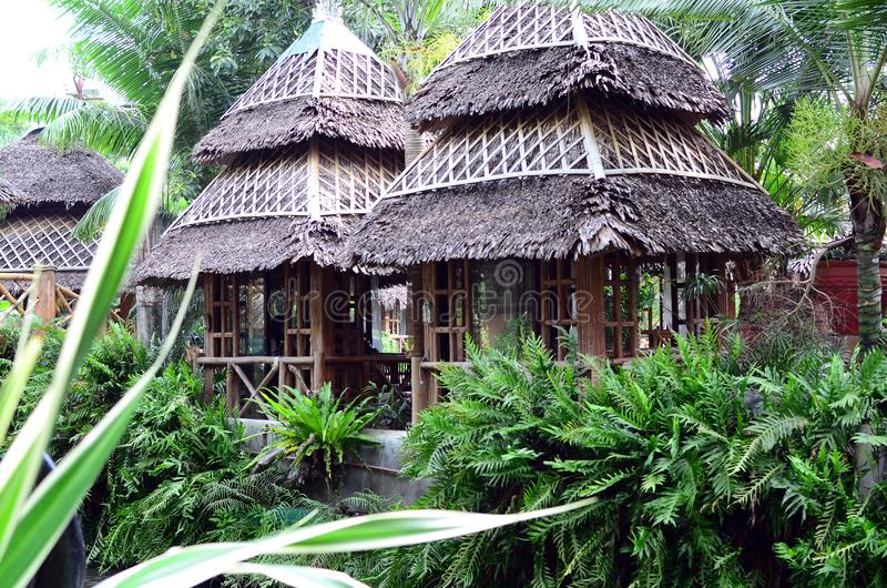 Bamboo and Coconut Leaves Cottage houses line in an Asian aquatic jungle theme park. Calauan Laguna, Philippines - August 28, 2016: Bamboo and Coconut Leaves royalty free stock photography