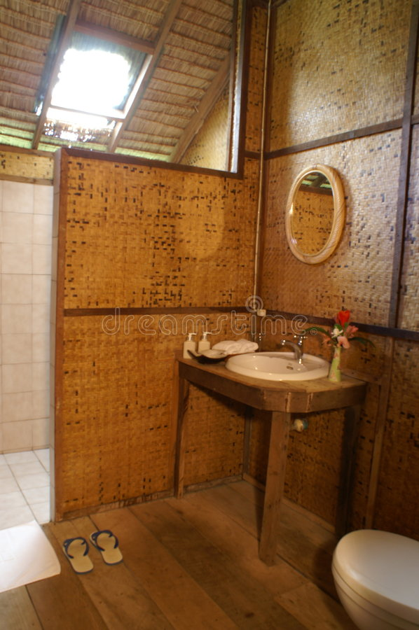 Bamboo design royalty free stock image