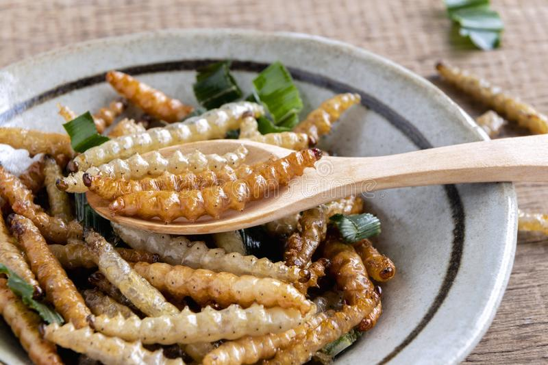 Bamboo edible worm insects crispy or Bamboo Caterpillar in a ceramic bowl on a wood table. The concept of protein food sources stock photos