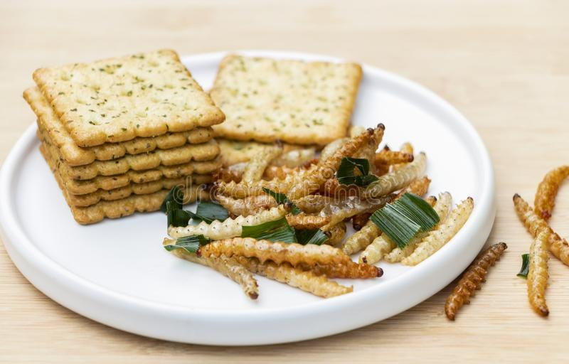 Bamboo edible worm insects crispy or Bamboo Caterpillar with cookies in ceramic dish. The concept of protein food sources from royalty free stock photo