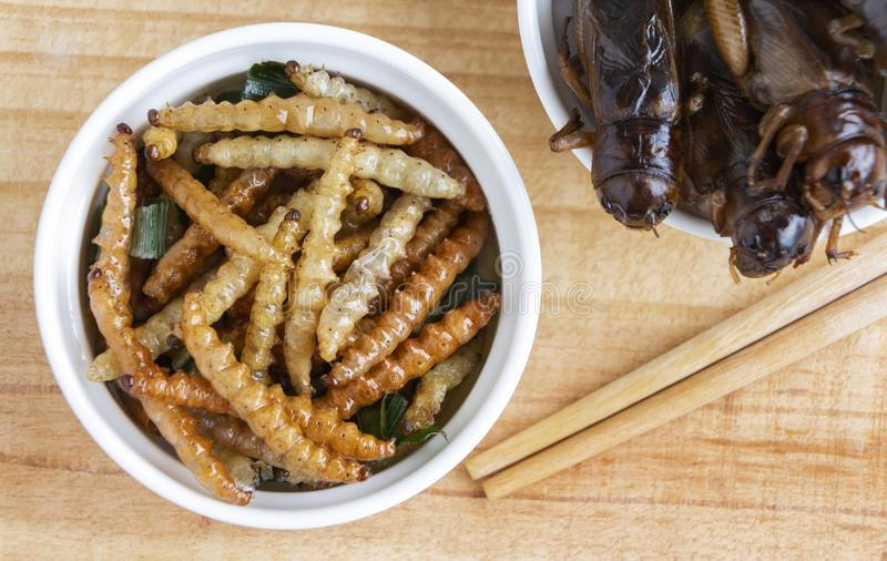Bamboo edible worm insects crispy or Bamboo Caterpillar in a ceramic bowl on a wood table. The concept of protein food sources stock photo