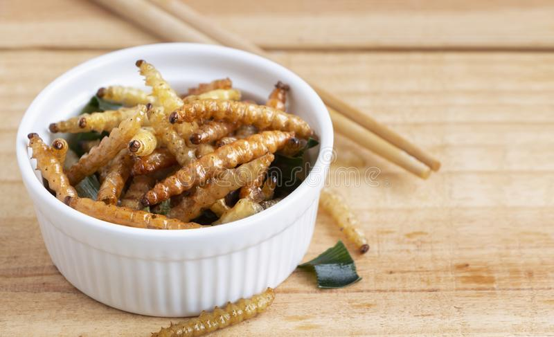 Bamboo edible worm insects crispy or Bamboo Caterpillar in white bowl on wood table. The concept of protein food sources from royalty free stock photo