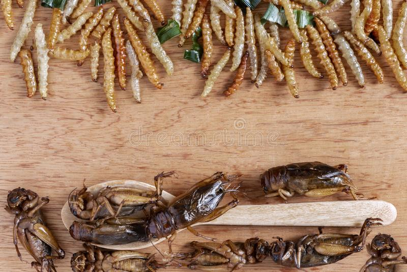 Bamboo edible worm insects crispy and crickets on a wood table. The concept of protein food sources from insects. It is a good royalty free stock image
