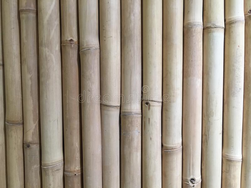 Download Bamboo exture stock image. Image of exture, bamboo, decorated - 88776951