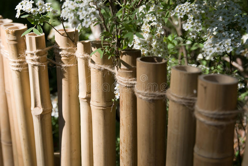 Download Bamboo fence stock photo. Image of japan, fence, nobody - 12823928