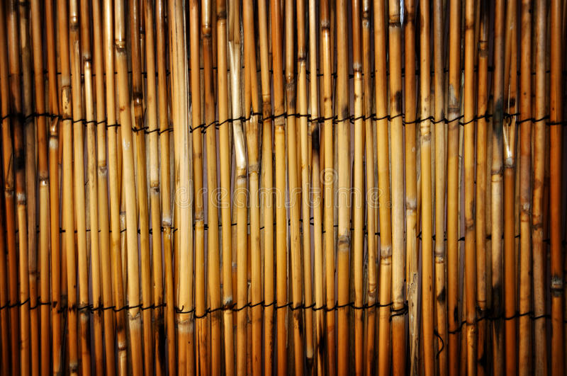 Bamboo fence. Brown bamboo strung together to create a fence stock photos