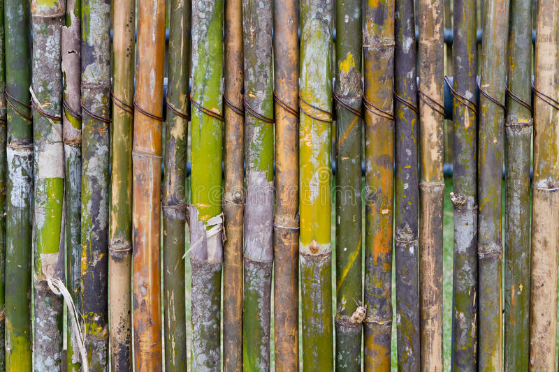 Download Bamboo fence stock image. Image of decor, brown, chinese - 22674365