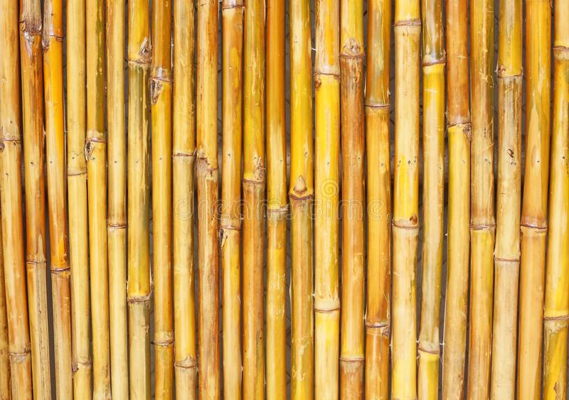 Download Bamboo Fence stock image. Image of fence, retro, decor - 22732443