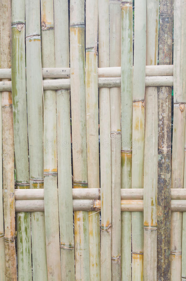 Download Bamboo fence stock image. Image of culture, bunch, pattern - 23359749