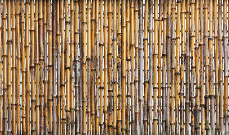 Download Bamboo Fence Royalty Free Stock Photo - Image: 25423435