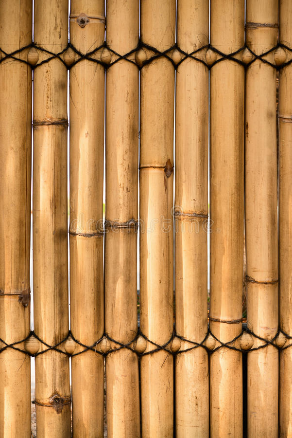 Download Bamboo fence stock image. Image of detail, branch, grass - 27667741
