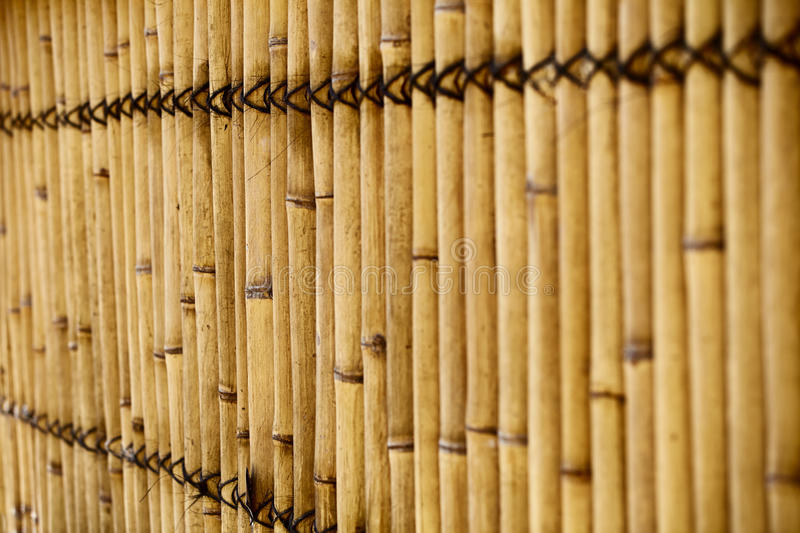 Download Bamboo fence stock image. Image of texture, bamboo, closeup - 28827525