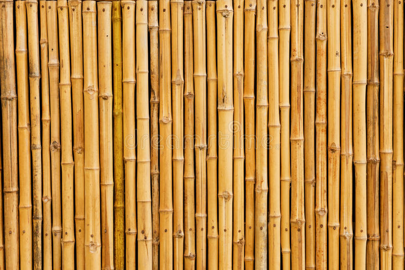 Bamboo fence background. Asia asian background bamboo bark bind bough branch brown bunch bundle chinese culture decor decoration fence finish forest garden stock photos