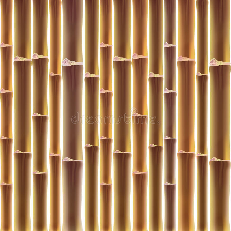 Free Bamboo Fence Background Royalty Free Stock Photos - 40982548