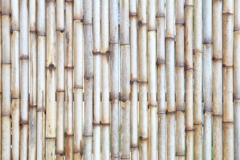 Download Bamboo fence stock image. Image of grunge, growth, bunch - 32411885