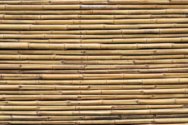 Bamboo fence background. Bamboo fence for background texture royalty free stock photography