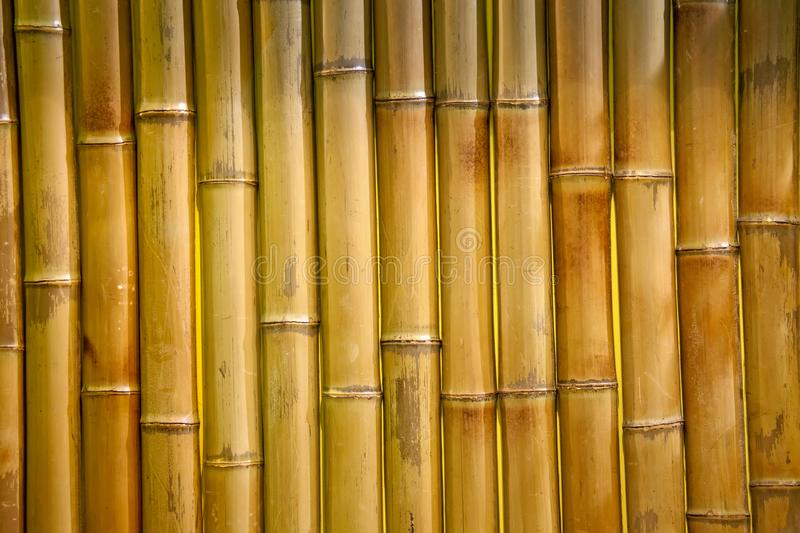 Bamboo fence background. Wooden texture royalty free stock image