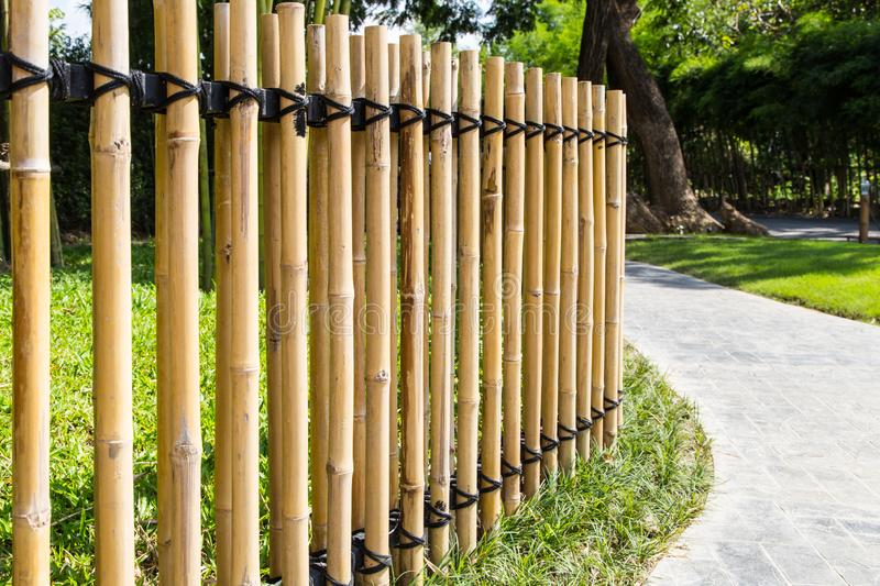 Bamboo fence in the garden. Bamboo fence with pathway in the garden royalty free stock photo