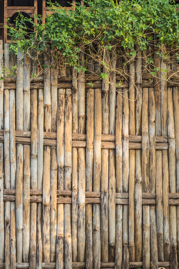 Download Bamboo fence stock image. Image of asian, tropical, texture - 41179163