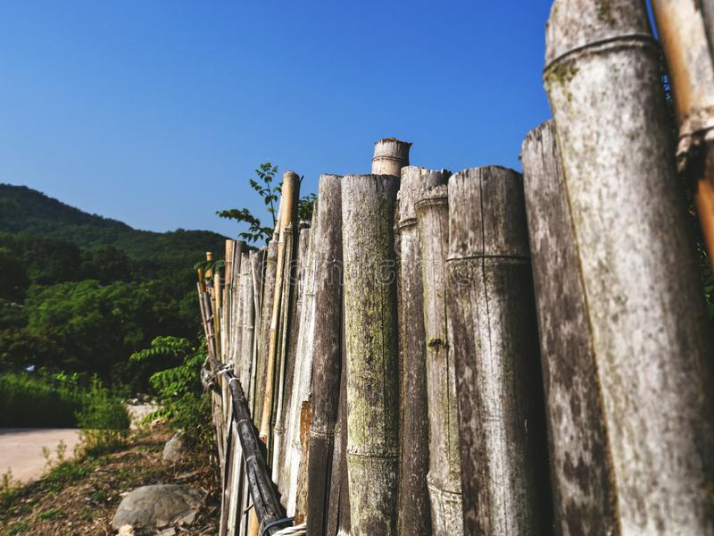 Bamboo fence in traditional village of South Korea royalty free stock photography