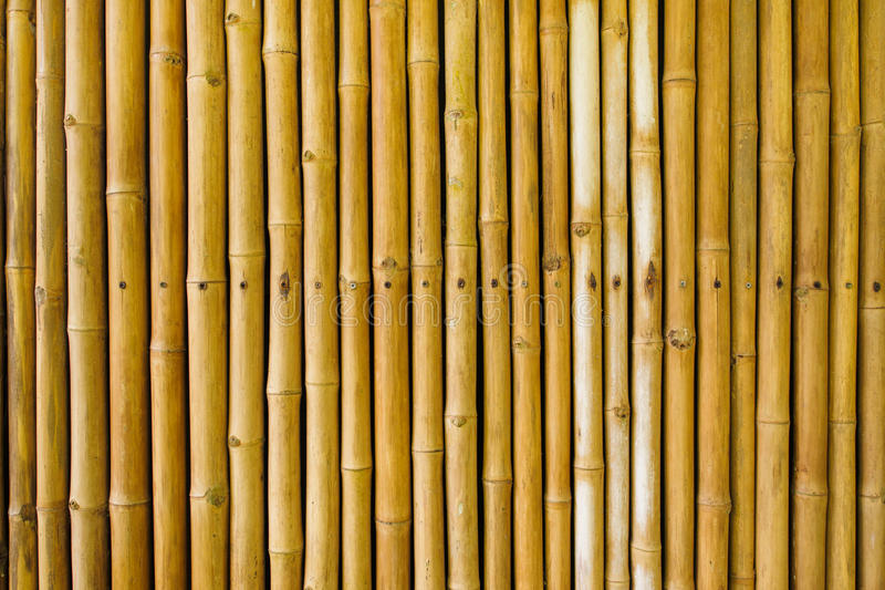 Bamboo fence. And wall background royalty free stock images