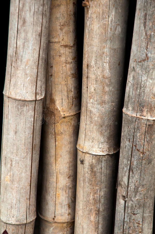 Download Bamboo Fence Wood - Texture Stock Images - Image: 25691664