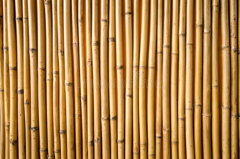 Download Bamboo Fence Royalty Free Stock Photos - Image: 32805248