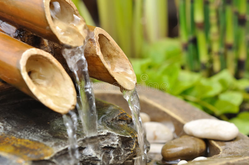 Bamboo fountain. Water from a bamboo fountain with aquatic vegetation royalty free stock photos